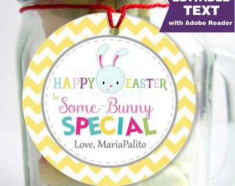 Editable Printable Easter Tag , Party Favor Sticker, Cute Some-Bunny Special Tag, Round or Square Topper, Instant Download-D858