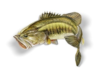 Largemouth Bass Decal - 6x6
