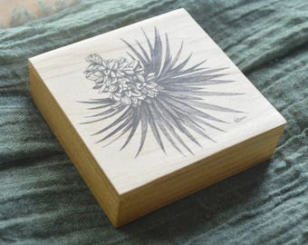 Joshua Tree Blossom Drawing on Wood Block Panel - Pen and Ink Nature Art Print by Heather L. Young