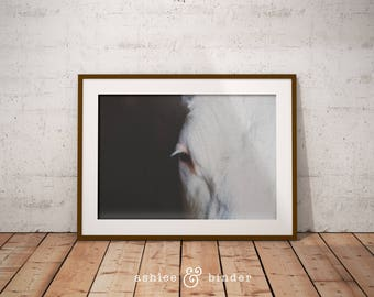 Modern Minimalist Horse Print, Horse Eye Photo, Black and White Photography, Digital Download, Printable Large Poster, Horse Decor Modern
