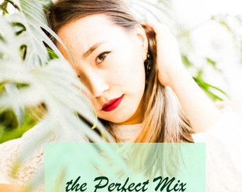 Perfect Mix Bundle Lightroom Presets for Bloggers