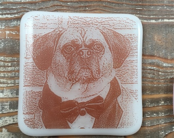 Pet's photograph in a fused glass pendant/coaster