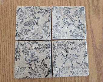 Oak associated insects coasters