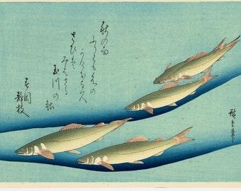 """Japanese Ukiyoe, Woodblock print, antique, Hiroshige, """"Ayu"""""""