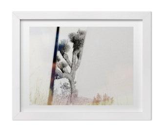 Joshua Tree Photography, Black and White Print, Minimalist Art, Nature Photography, California Landscape Photography, Minimalist Decor