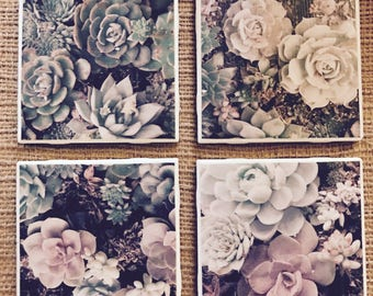 Succulent Coasters - Christmas Gifts, Anniversary Gifts, Valentines Day Gift, Baby/Bridal Shower, Mother's/Father's Day, Birthday Gift
