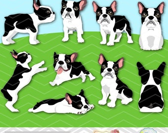Digital Dog Clip Art, Cute Dog Clipart, French Bulldog Clipart, Boston Terrier Clipart, dog breed design, Dog Digital Clipart 0262