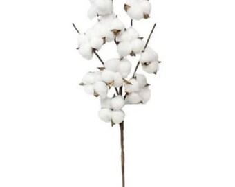 cotton, cotton stems, farmhouse style, cotton anniversary, farmhouse gifts, farmhouse decor, living room decor, farmhouse, modern farmhouse