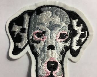 Adorable DALMATIAN Dog Head PATCH Detailed Mint Cond