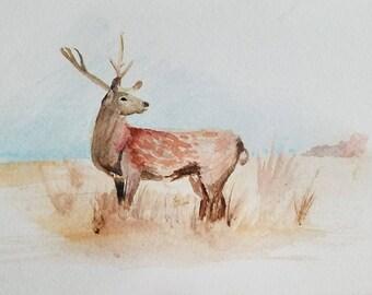 Watercolor deer - Original painting