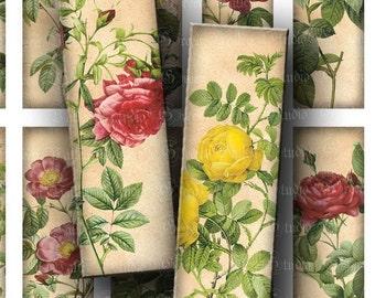INSTANT DOWNLOAD Digital Images Sheet Roses Flowers Microscope Slides Nature Botanicals 1 x 3 Inch Slides for Pendants Crafts (M60)