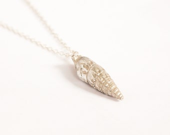Auger Shell Necklace