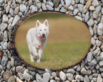 Get your pet picture printed onto wood, Basswood with bark. Photo On Basswood