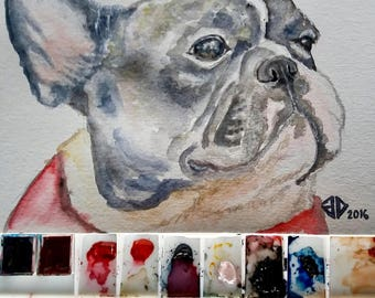 Custom Pet Portrait [watercolour]