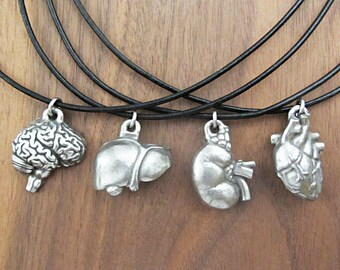 Human Anatomy Necklace Assortment - Medical Anatomical Pendants, Anatomical Jewelry