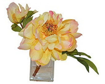 Yellow Peonies in a Sq. Vase