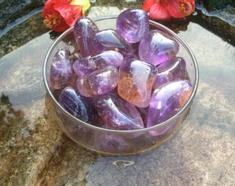 Ametrine Tumbled Stones in Bulk from Bolivia AAA Grade (Combination of Amethyst and Citrine) - Tumbled Ametrine Crystals