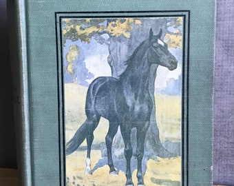 Black Beauty Vintage First Edition 1911 Book