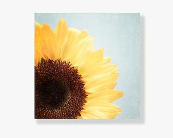 Sunflower photo canvas art, yellow sunflower photo, pale blue, shabby chic decor, nature photograph, large wall art, flower photo - Sunshine