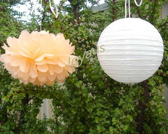 Peach Pom Poms & White Paper Lanterns for Wedding Engagement Anniversary Birthday Party Bridal Baby Shower Decoration