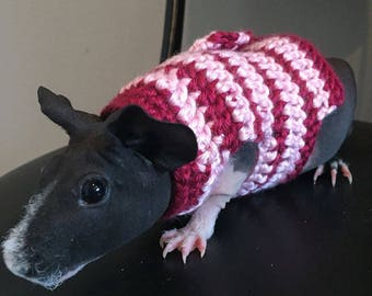 Guinea Pig Clothes, Guinea Pig Striped Sweater, Guinea Pig Clothing, Skinny Pig Sweater, Cavy Accessories, Hairless Guinea Pig