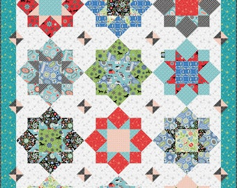 "QUILTING FUN (Quilt Pattern) - ""Folk Art Flowers"" - Design by Amanda Murphy"