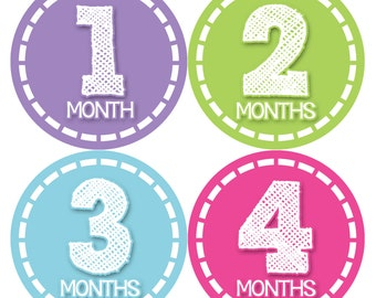 Monthly Baby Stickers Baby Month Stickers Baby Girl Month Stickers Monthly Photo Stickers Monthly Milestone Stickers 376