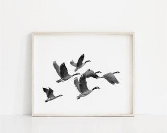 Flying Bird Print, Geese Flock of birds Print, Printable Art, Minimalist Bird Print, Bird Photography, Bird Wall Art, Modern Bird Wall Art