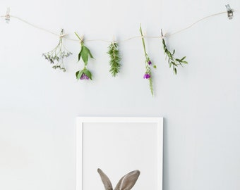 Bunny rabbit print - Nursery art print - Nursery decor - Bunny art print - Rabbit photography - Nursery animal print - Minimalist nursery