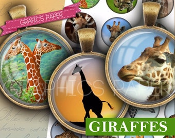 "Animals images Giraffes Collage Sheet - td247 - 1.5 inch, 1.25"", 30mm, 1 inch, 25mm, 1 inch Round Circles for Pendants, BottleCaps Printable"