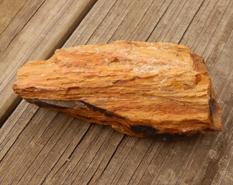 Genuine ROUGH PETRIFIED WOOD Specimen Stone - Beautiful Wood Grain Detail - Real Fossils - Healing Crystals - Gemstone Collections