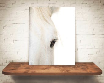 Horse Photograph - Fine Art Print - Color Photo - Wall Art - Farmhouse Decor - Wall Decor - Equine Photography - Pictures of Horses