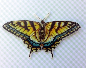 Swallowtail Butterfly Brooch