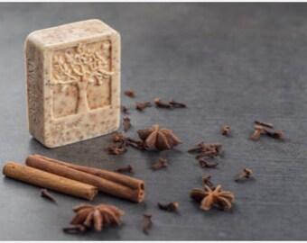 Cinnamon and Sugar Soap scrub