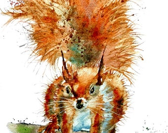 Rusty Squirrel, a fine digital print from a watercolour by Pauline Merritt