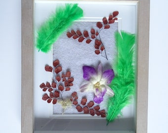 plant frame under glass