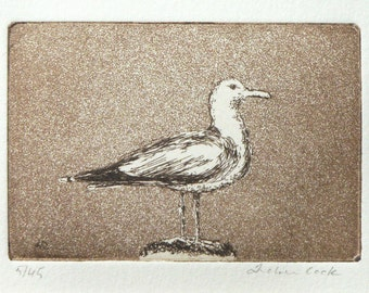 original etching and aquatint of a seagull