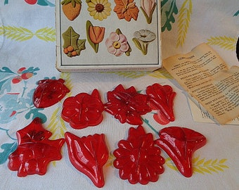 Vintage Aunt Chick Flower Garden Cookie Cutters Complete Box and Cutters