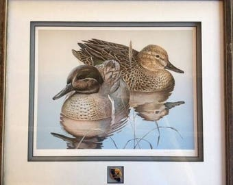Dave Seller's, Green Winged Teal Pair, Artist Signed and Numbered Print, Framed
