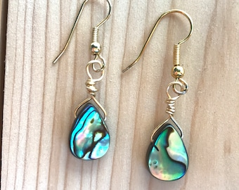 Abalone earrings, Paua earrings, Teardrop abalone earrings, Gold or silver wire
