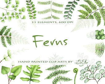 Watercolor Fern Clipart Greenery Clip Art Leaf Leaves Woodland Clipart Vector Green Forest Wood Illustration Wedding Invitation Foliage Fern