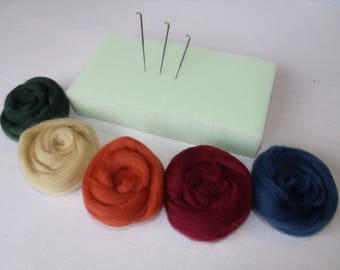 Special carded 5 Lot 5 color Merino Wool Felting Kit
