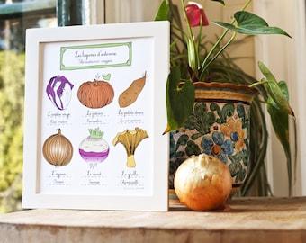 Kitchen Art Illustration Print 'Autumn Vegetables' 8x10 Fall Orange Pumpkin red endive Sweet Potato onion turnip chanterelle