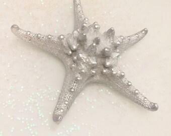 Silver Knobby Star Fish Beach Decor