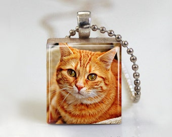 Marmalade Orange Kitty Cat - Scrabble Tile Pendant - Free Ball Chain Necklace or Key Ring