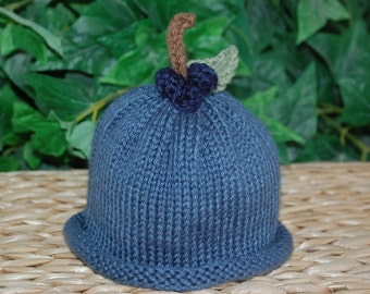 Maine Blueberry Hat, Photography Prop, Beanie hat, Rolled Brim hat, Preemie/12 Months