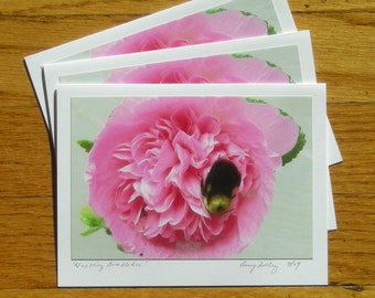 Nestling Bumblebee, Photo Art Card