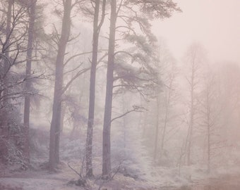 Black Isle, Scotland | 5 x 7 inches Giclee print of Infra red photograph of a foggy landscape | Unique art of nature that nurtures