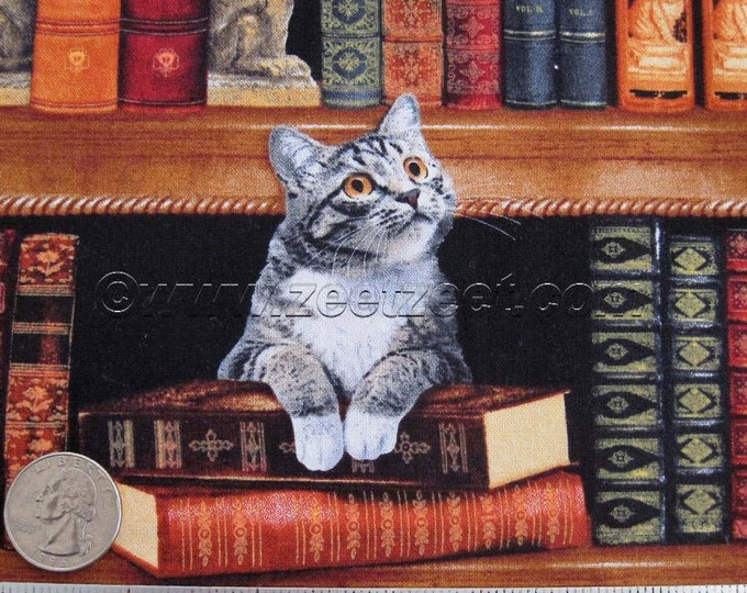 "Remnants CATS in the LIBRARY Cotton Quilt Fabric 24"" Length and/or FQ Fat Quarter - Reading Books Cat Kitty Literary"