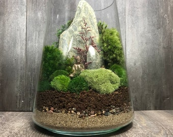 Now and Zen Moss Terrarium- Fully Assembled